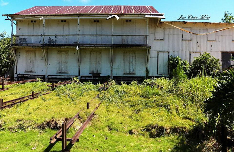 Hacienda-Masini-Chepo-Moris.jpg