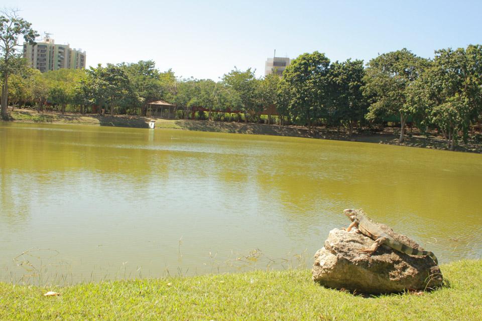 Parque-Urbano-1.jpg