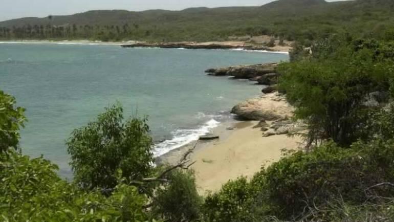 Playa Bahía Ballena